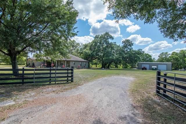 7701 Hackamore Road, Zephyrhills, FL 33541 (MLS #T3304562) :: Premier Home Experts