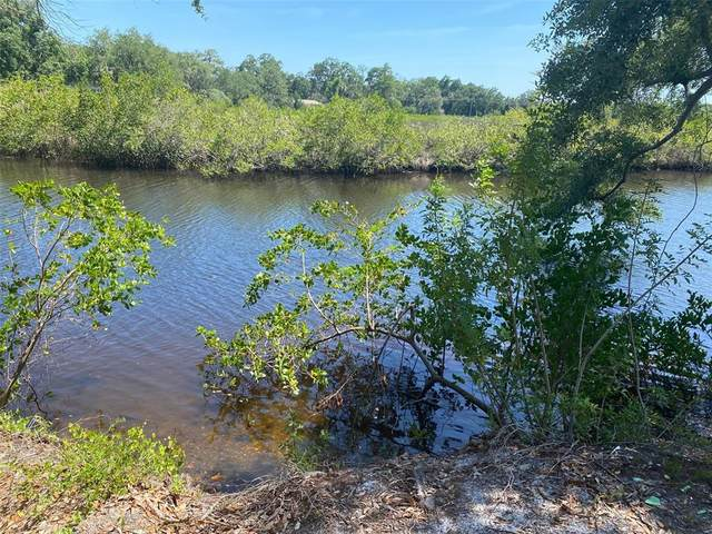 12508 Glenna Avenue, Tampa, FL 33635 (MLS #T3304862) :: Bridge Realty Group