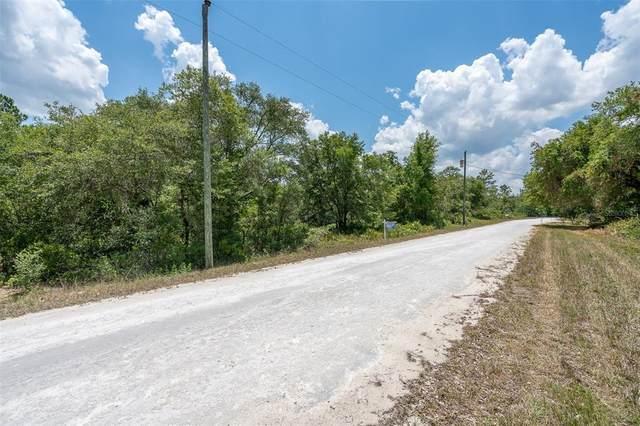 0 Shellstream Drive, Webster, FL 33597 (MLS #T3305086) :: Zarghami Group