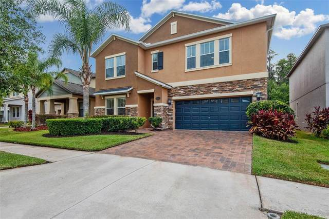 19346 Paddock View Drive, Tampa, FL 33647 (MLS #T3305144) :: The Nathan Bangs Group