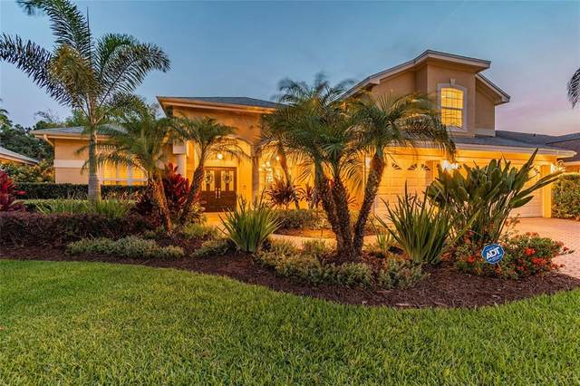 11906 Keating Drive, Tampa, FL 33626 (MLS #T3305254) :: Delgado Home Team at Keller Williams