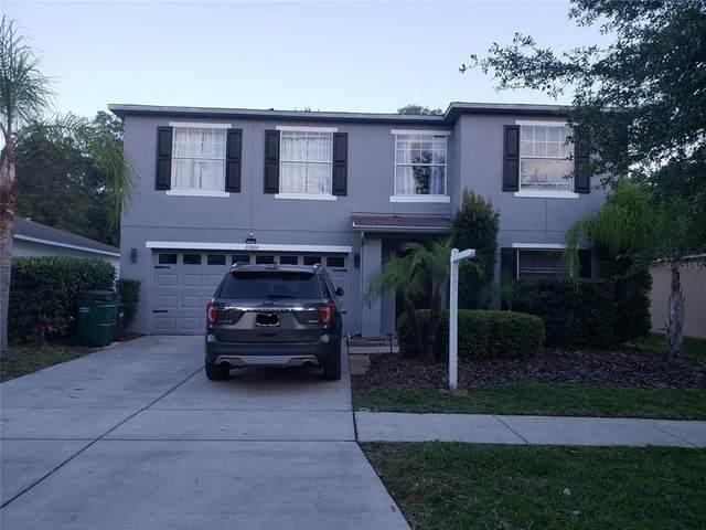 31004 Mandolin Cay Avenue, Wesley Chapel, FL 33543 (MLS #T3305345) :: Premier Home Experts