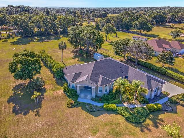 10502 Lithia Estates Drive, Lithia, FL 33547 (MLS #T3305393) :: The Robertson Real Estate Group