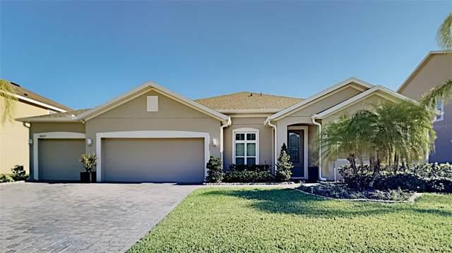 14529 Black Lake Preserve Street, Winter Garden, FL 34787 (MLS #T3305583) :: Expert Advisors Group
