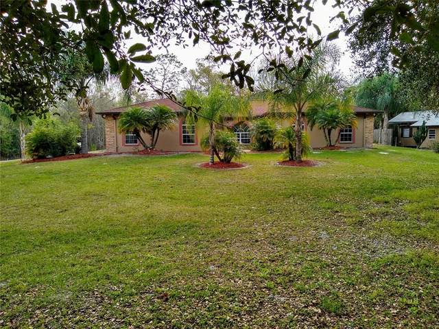 Land O Lakes, FL 34639 :: Everlane Realty
