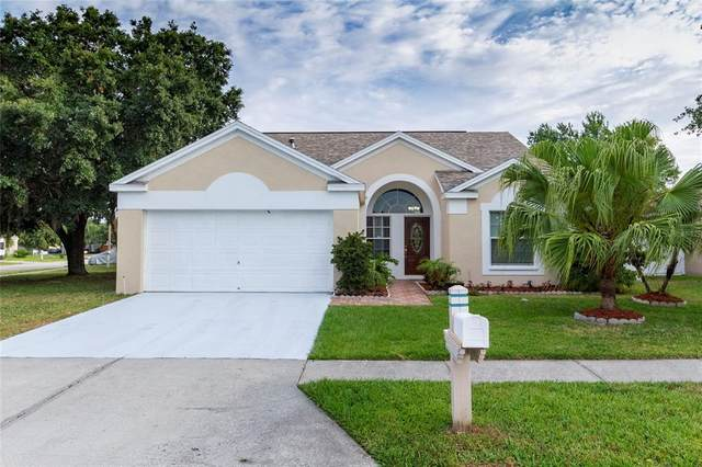 29842 Morningmist Drive, Wesley Chapel, FL 33543 (MLS #T3305770) :: Griffin Group