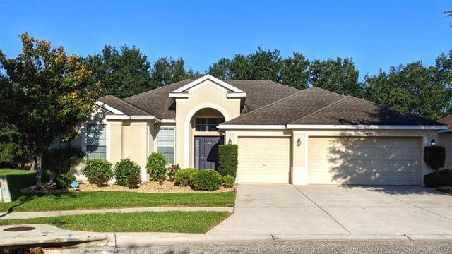 10729 Rockledge View Drive, Riverview, FL 33579 (MLS #T3305816) :: The Paxton Group