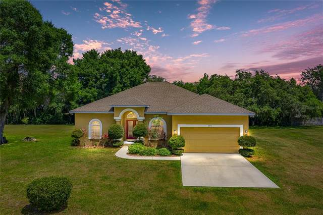 2811 Olavet Court, Valrico, FL 33596 (MLS #T3305854) :: The Robertson Real Estate Group