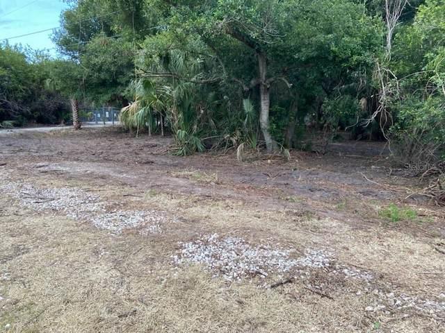 Dr Ml King Jr St N, Safety Harbor, FL 34695 (MLS #T3305975) :: The Lersch Group