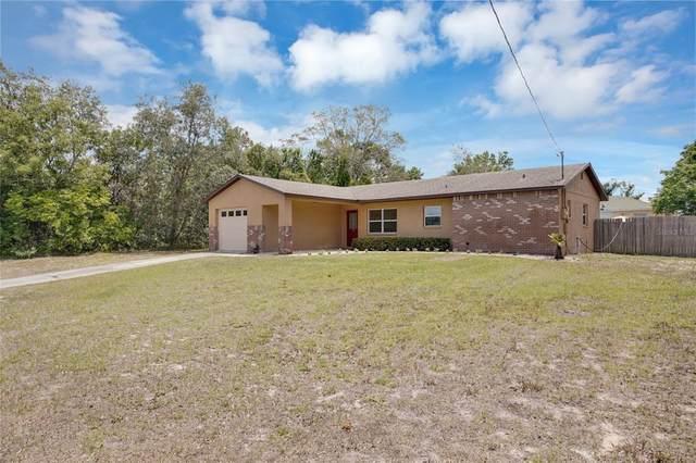 4220 Dristol Avenue, Spring Hill, FL 34609 (MLS #T3306407) :: The Hesse Team