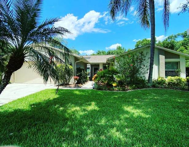 616 Shady Nook Drive, Brandon, FL 33511 (MLS #T3306842) :: Team Borham at Keller Williams Realty