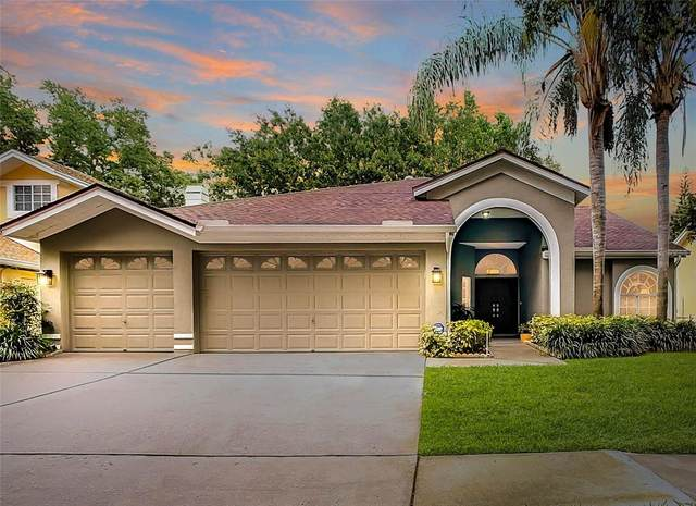 17723 Hampshire Oak Drive, Tampa, FL 33647 (MLS #T3306941) :: Team Borham at Keller Williams Realty