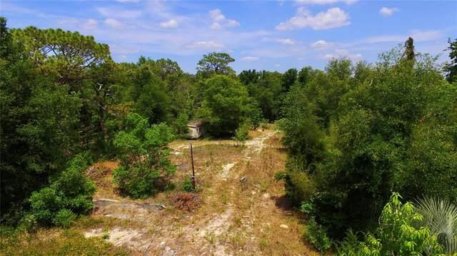 17338 Trojantown Drive, Spring Hill, FL 34610 (MLS #T3307243) :: Armel Real Estate