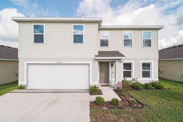 4225 High Ridge Avenue, Spring Hill, FL 34609 (MLS #T3307325) :: The Hesse Team