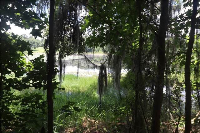SW Summerset Way, Madison, FL 32340 (MLS #T3307548) :: Coldwell Banker Vanguard Realty