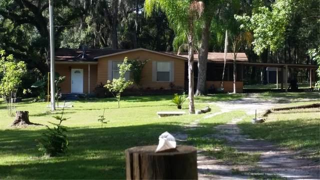 25318 Ash Street, Brooksville, FL 34601 (MLS #T3307911) :: Vacasa Real Estate