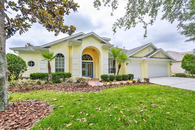 15905 Sorawater Drive, Lithia, FL 33547 (MLS #T3308541) :: Alpha Equity Team