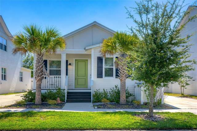 11225 Moultrie Place, Tampa, FL 33625 (MLS #T3309015) :: Team Bohannon