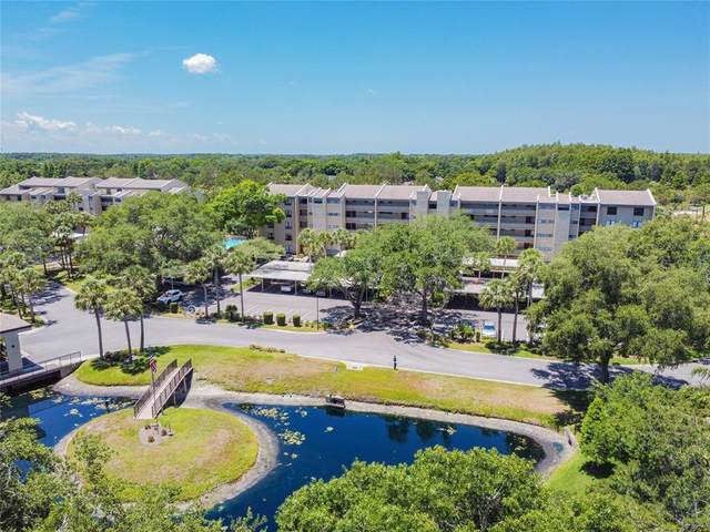 13626 Greenfield Drive #302, Tampa, FL 33618 (MLS #T3309899) :: Delgado Home Team at Keller Williams