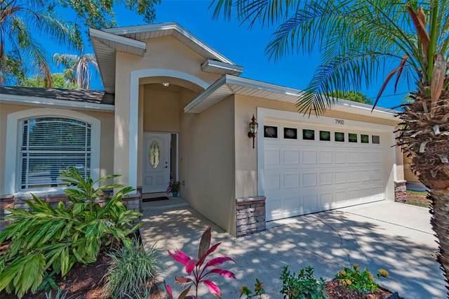 7902 N Boulevard, Tampa, FL 33604 (MLS #T3309997) :: Kelli and Audrey at RE/MAX Tropical Sands