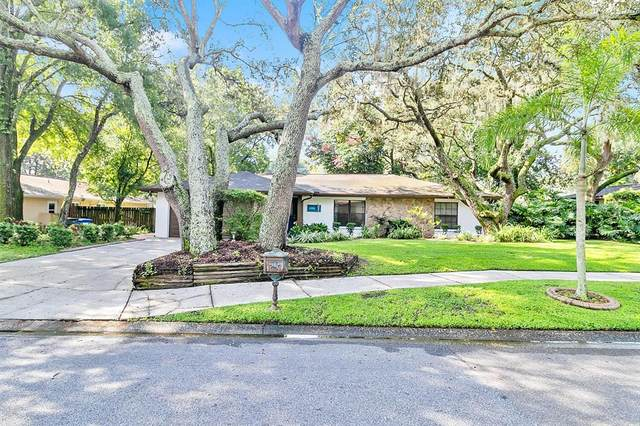1206 Beacon Hill Drive, Tampa, FL 33613 (MLS #T3310086) :: Zarghami Group