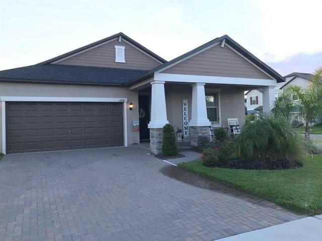 13338 Wildflower Meadow Drive, Riverview, FL 33579 (MLS #T3310157) :: Everlane Realty