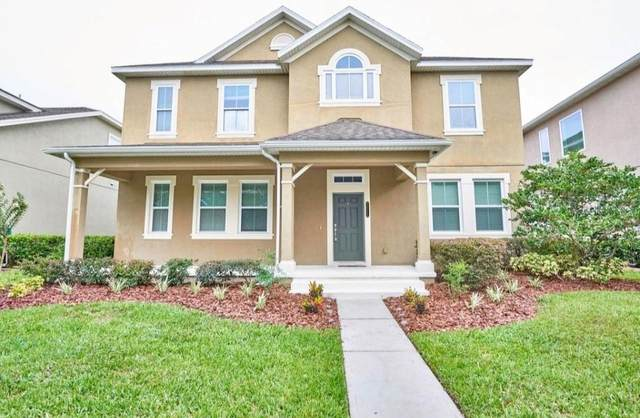 20110 Outpost Point Drive, Tampa, FL 33647 (MLS #T3310504) :: Team Bohannon