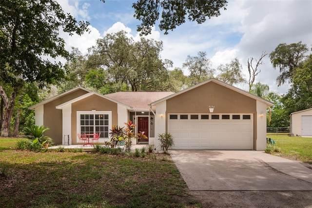 5054 Ryals Road, Zephyrhills, FL 33541 (MLS #T3310575) :: Frankenstein Home Team