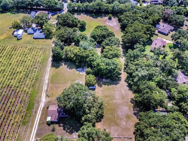1801 Demastus Lane, Ocoee, FL 34761 (MLS #T3310942) :: Armel Real Estate
