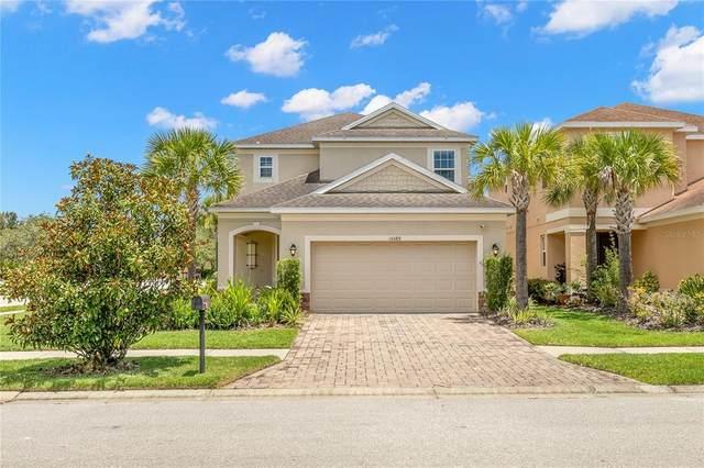 16088 Bella Woods Drive, Tampa, FL 33647 (MLS #T3310958) :: Prestige Home Realty