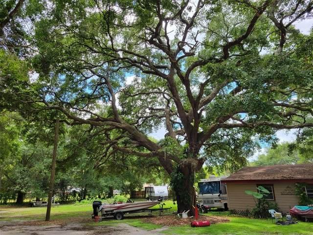 3914 Hudson Lane, Tampa, FL 33618 (MLS #T3311206) :: Cartwright Realty