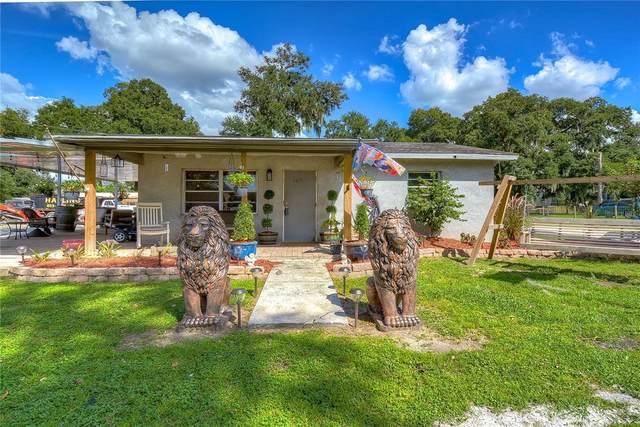 105 S Saint Cloud Avenue, Valrico, FL 33594 (MLS #T3311573) :: Griffin Group