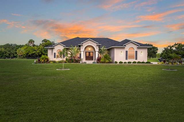 10607 Lithia Estates Drive, Lithia, FL 33547 (MLS #T3312097) :: Everlane Realty