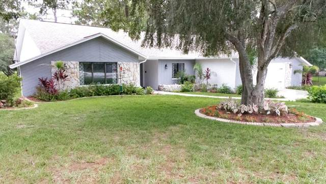 1459 Glenridge Drive, Spring Hill, FL 34609 (MLS #T3312138) :: Vacasa Real Estate