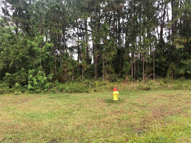 Blk 273 L 11 Limonia Drive, Indian Lake Estates, FL 33855 (MLS #T3312263) :: Coldwell Banker Vanguard Realty