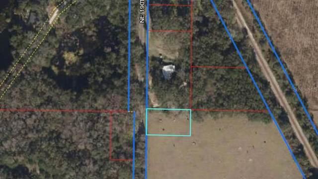 0 NE 190 Avenue, Williston, FL 32696 (MLS #T3312995) :: Armel Real Estate