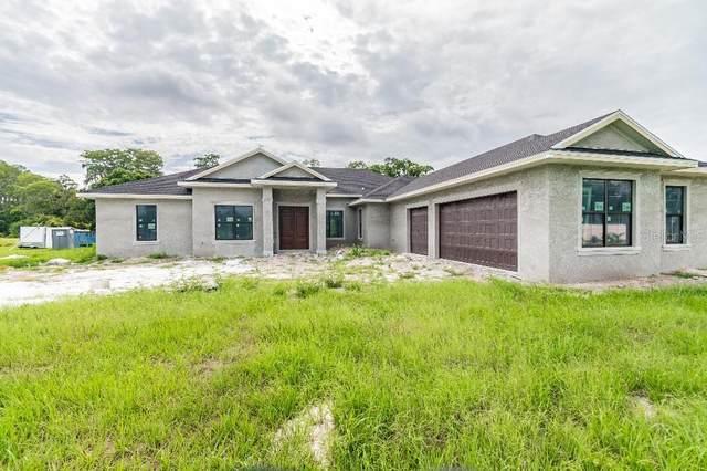7702 Kenia Meadows Lane, Odessa, FL 33556 (MLS #T3313024) :: Griffin Group