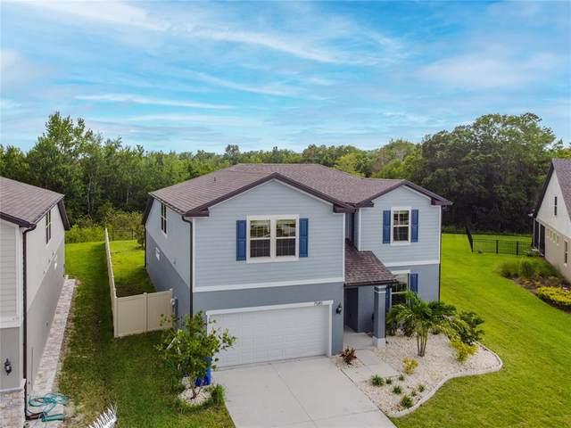 7585 Yale Harbor Drive, Wesley Chapel, FL 33545 (MLS #T3313415) :: Globalwide Realty