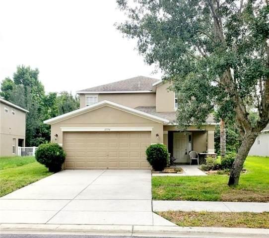 12534 Chenwood Avenue, Hudson, FL 34669 (MLS #T3313494) :: Vacasa Real Estate
