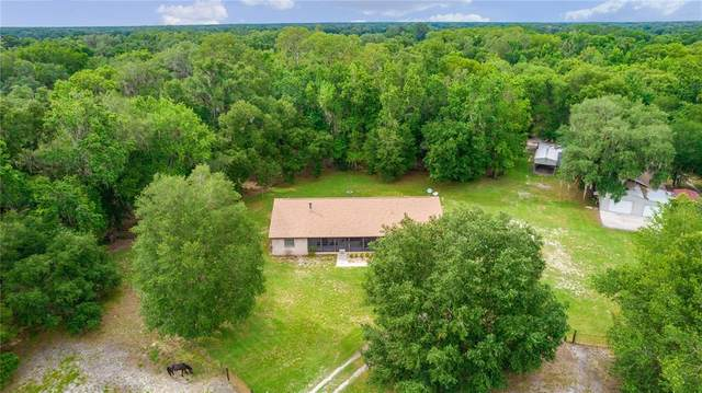1760 Cr 753S, Webster, FL 33597 (MLS #T3313497) :: Rabell Realty Group
