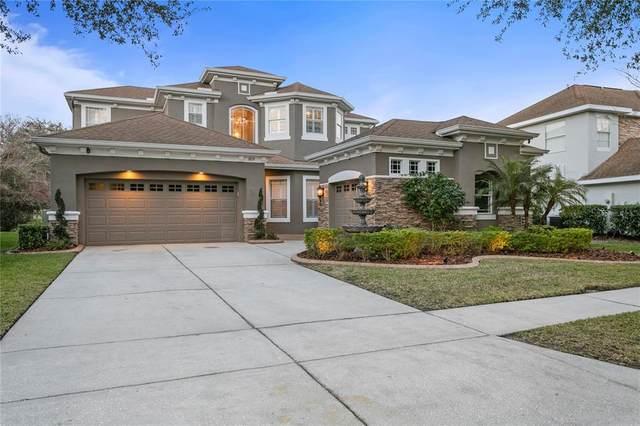 10119 SW Deercliff Drive, Tampa, FL 33647 (MLS #T3313609) :: Team Bohannon