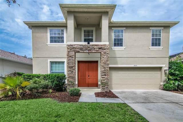 19128 Meadow Pine Drive, Tampa, FL 33647 (MLS #T3313801) :: Team Bohannon