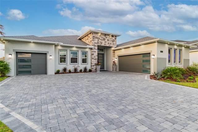 31844 Tortuga Shore Loop, Wesley Chapel, FL 33545 (MLS #T3313966) :: Zarghami Group