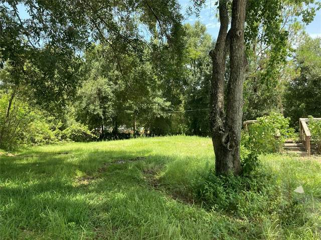 1806 Eaton Road, Odessa, FL 33556 (MLS #T3315288) :: Gate Arty & the Group - Keller Williams Realty Smart