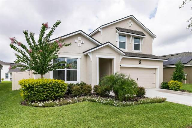 11507 Blue Woods Drive, Riverview, FL 33569 (MLS #T3316234) :: Cartwright Realty