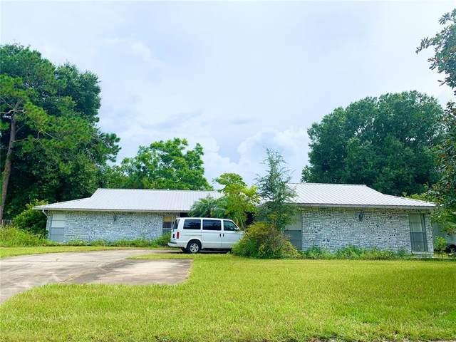22342 Shoreside Drive, Land O Lakes, FL 34639 (MLS #T3316688) :: Everlane Realty