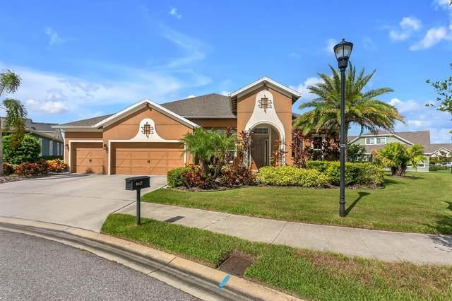 6927 Crestpoint Drive, Apollo Beach, FL 33572 (MLS #T3317436) :: Vacasa Real Estate