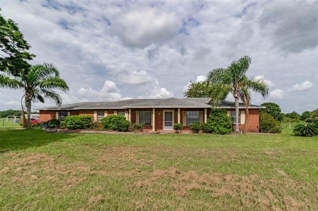 14605 Balm Boyette Road, Riverview, FL 33579 (MLS #T3317456) :: Zarghami Group