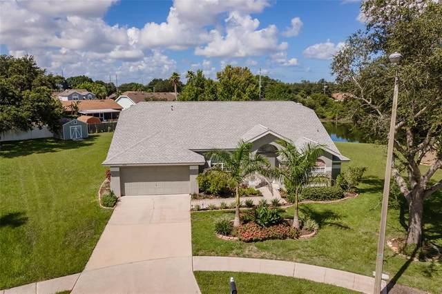 9623 Glenox Lane, Riverview, FL 33569 (MLS #T3318703) :: Cartwright Realty