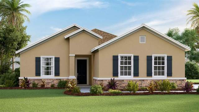 6267 SE 13TH Street, Ocala, FL 34472 (MLS #T3318829) :: Rabell Realty Group